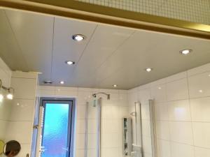 Plafond vervangen (1024x768)